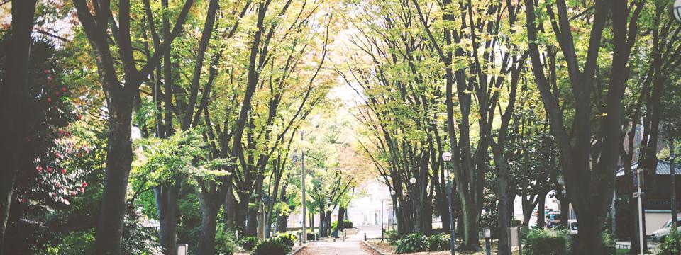 ブロガー用スマホ対応WordPressテーマ「Vanilla City」(レスポンシブwebデザイン対応)